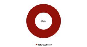 100% Jobaussichten